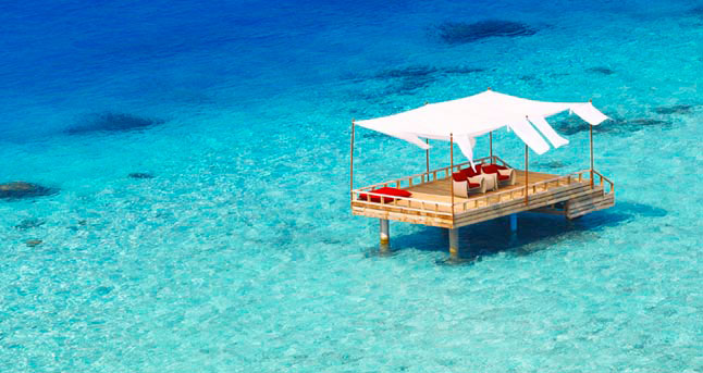 Learn More about the Maldives
