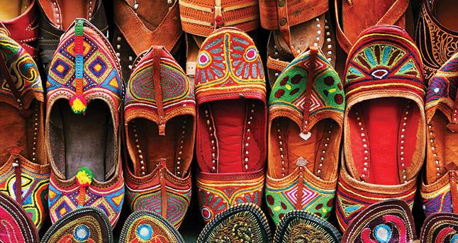 Family Tour of India