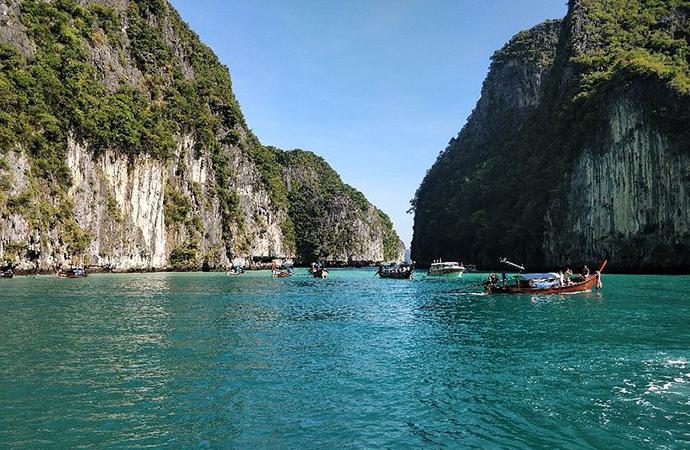 Thai Wildlife and Culture