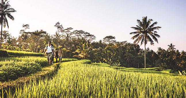 Adventure In Northern Thailand